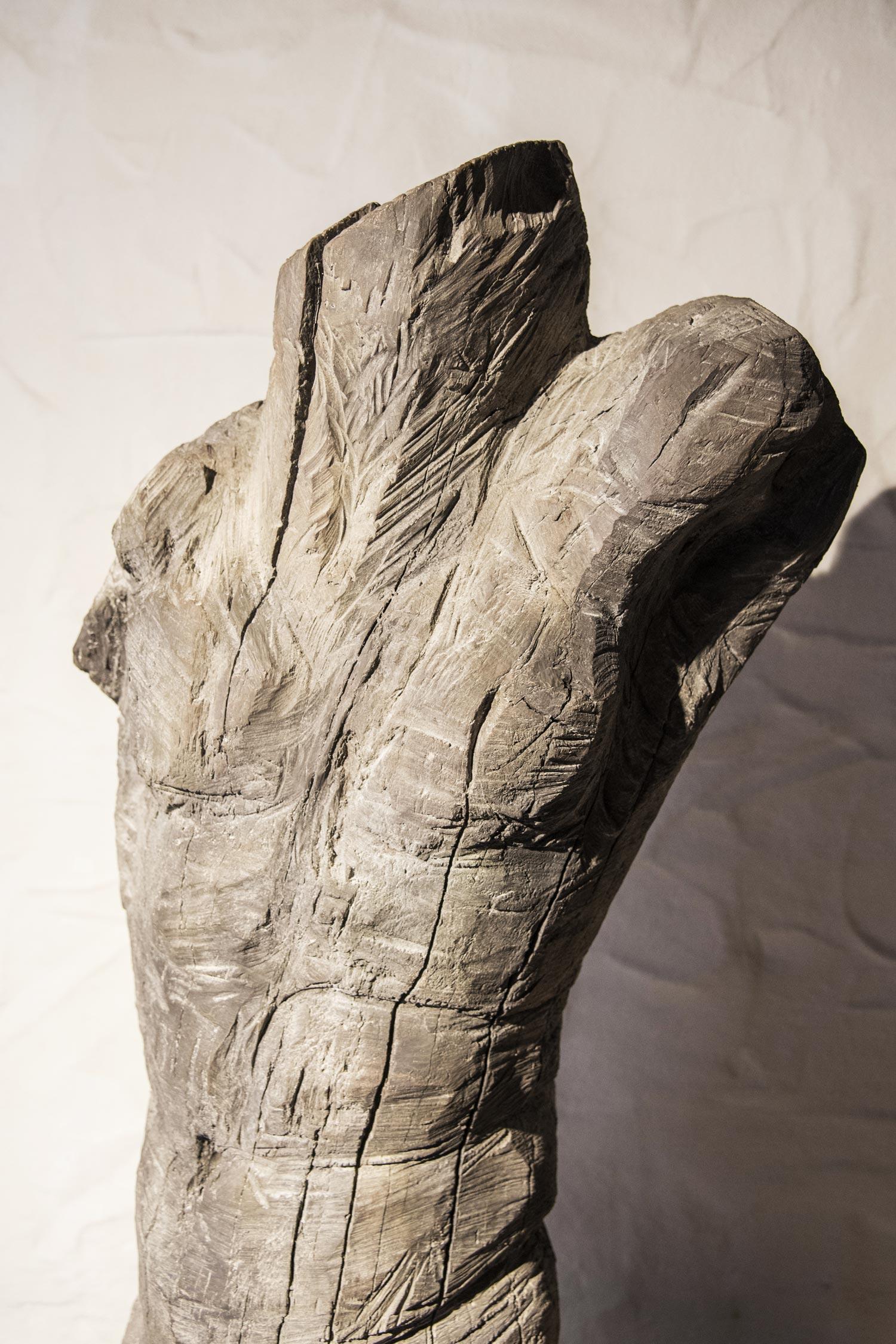 TORSO--Bronze--Detail-III_P_web