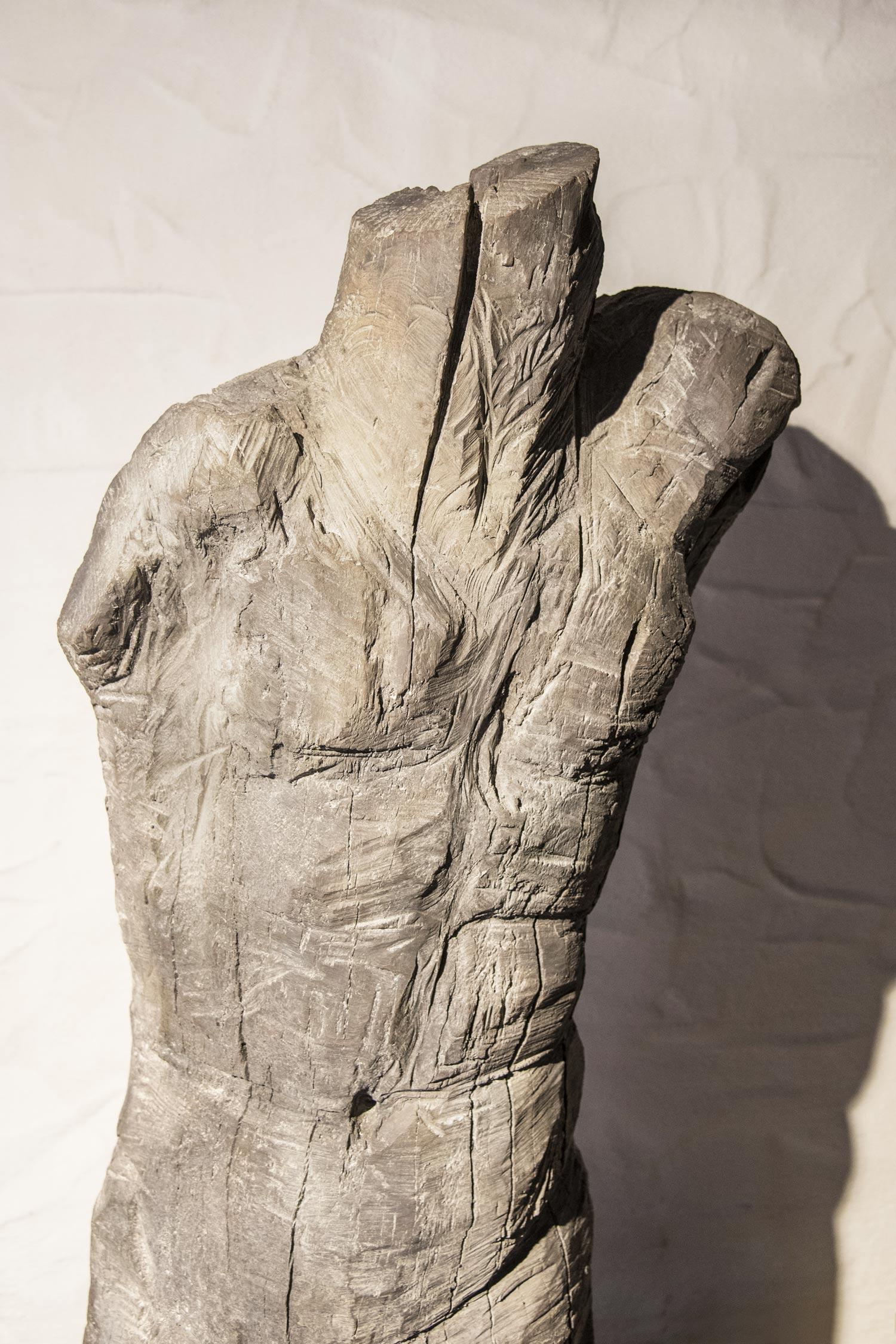 TORSO--Bronze--Detail-II_P_web